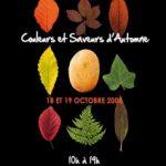 Eaubonne : » Couleurs et Saveurs d'Automne 2008 »  17 et 18 octobre