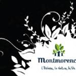 Montmorency de Mars à Avril (2011)