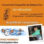 Les Melusines, Concert caritatif