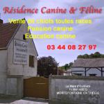 Résidence Canine & Féline