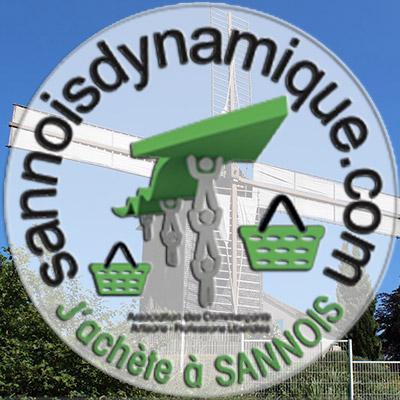 sannois-dynamique.jpg