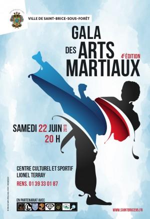 Gala des arts martiaux à Saint Brice